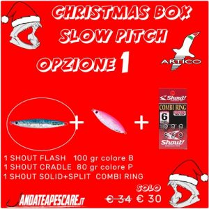 CHRISTMAS BOX Artico slow pitch 1
