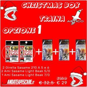 CHRISTMAS BOX Artico Traina 1