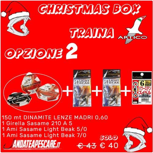 CHRISTMAS BOX Artico Traina 2