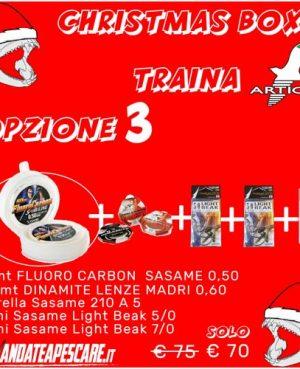 CHRISTMAS BOX Artico Traina 3